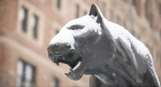 Panther statue covered in snow