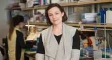 Professor Andrea Berman