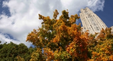 Cathedral with fall trees below it