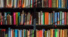 Books lining shelves